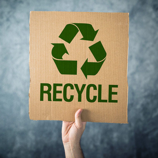 RECYCLE. Man holding cardboard with Recycle symbol printed, environment preservation activist.