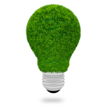 light bulb made of green grass on white background